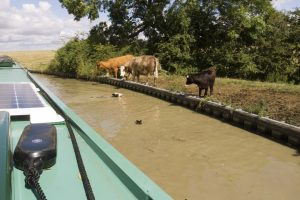 Other users of the Oxford Canal